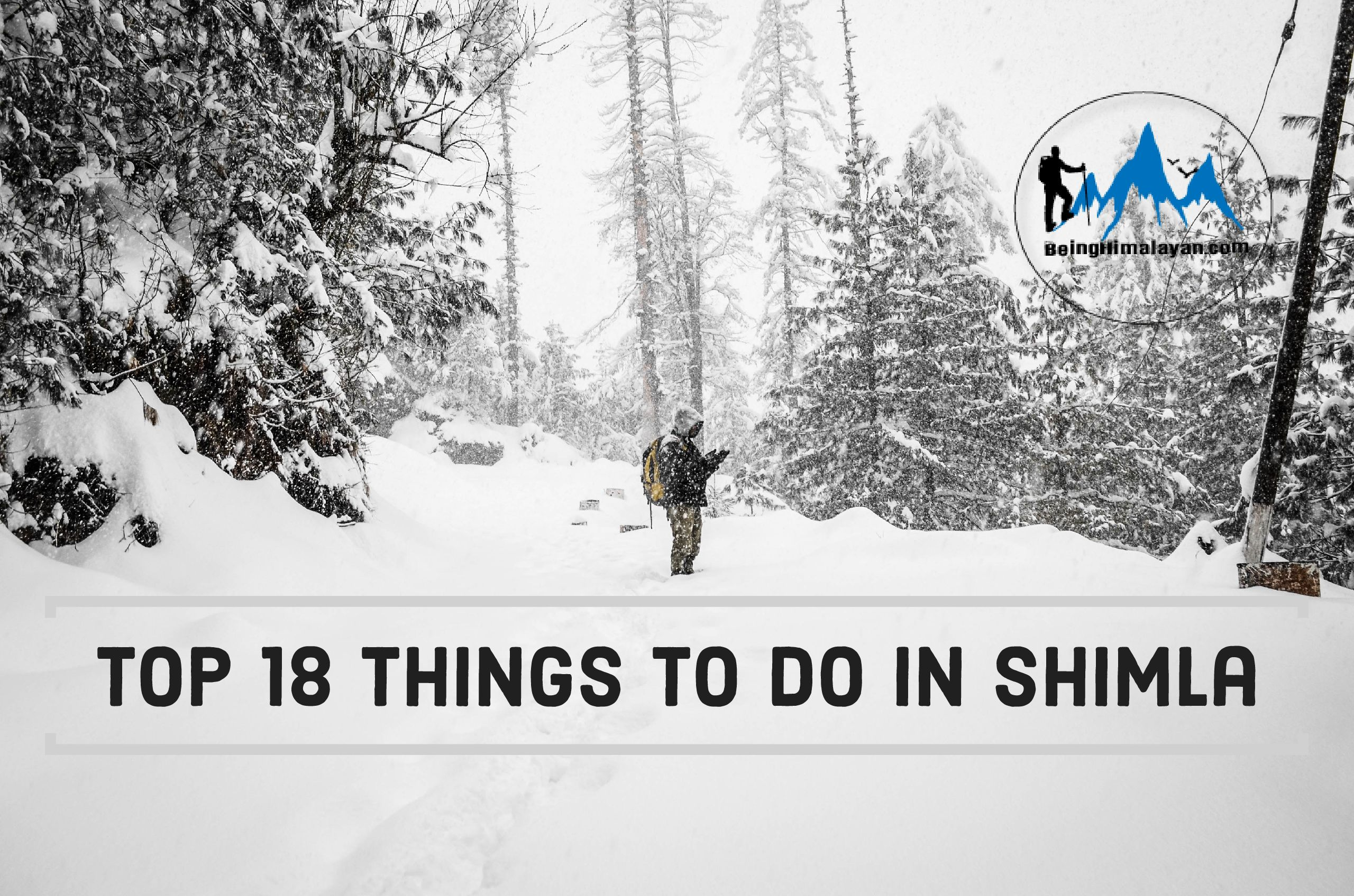 Top 18 Things to do in Shimla